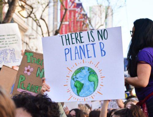 Warum Bildung eine Klimafrage ist